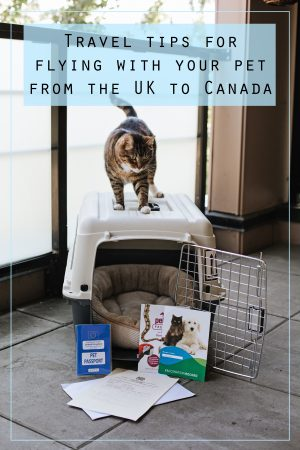 Travel tips for flying with your pet from the UK to Canada. These tips will help ease the stress and confusion of exporting animals, so you can all arrive at your new home safely.